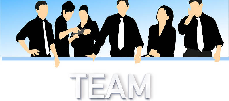Webinar How to develop great teams