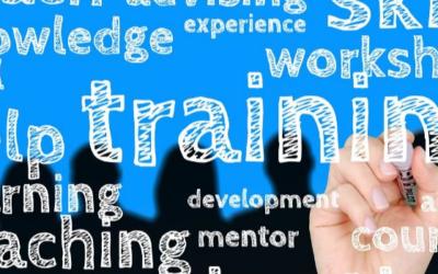 Effektives Lernen im Management